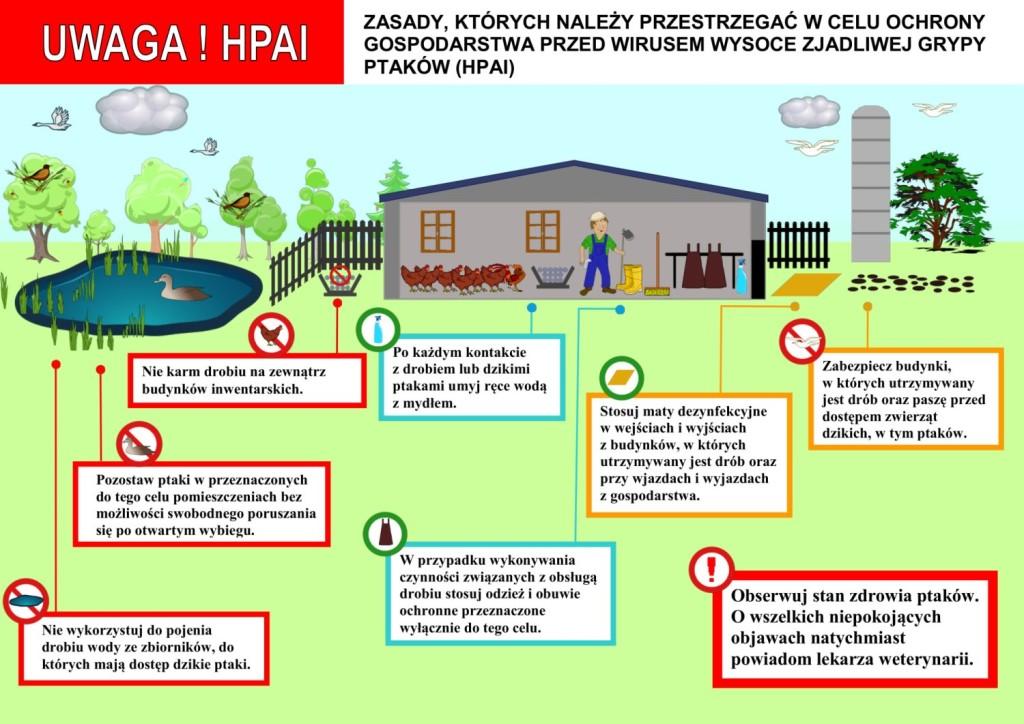 Schemat zasad które należy przestrzegać w celu ochrony gospodarstwa przed wirusem ptasiej grypy
