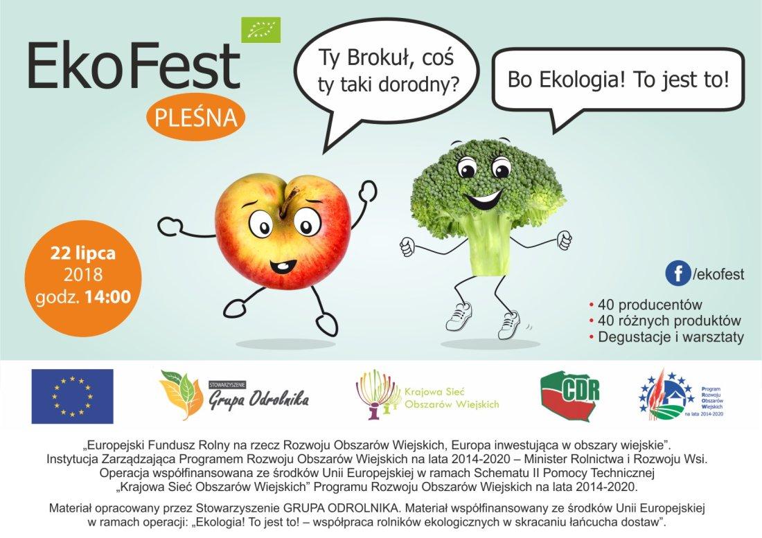 """EkoFest"""" – """"Ekologia! to jest to!"""", plakat imprezy"""