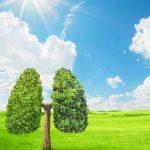 Wznowienie naboru – program Czyste Powietrze